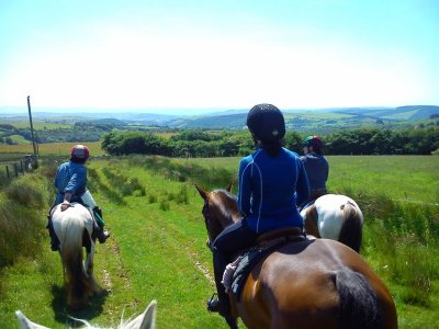 Saddle Tramps Trail Riding