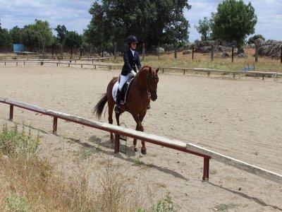Introductory equestrian classes in EL Escorial