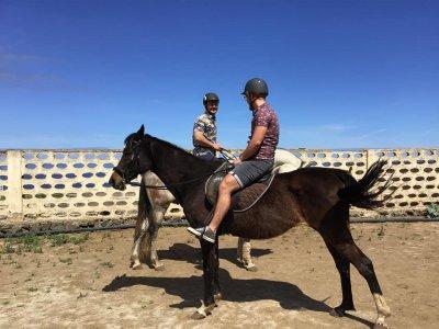 Savvy Tenerife Clases de Equitación