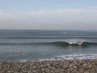 The crisp coast