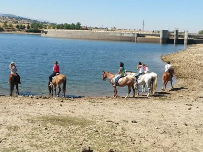 Horse riding in Segovia for groups 2,5 hours