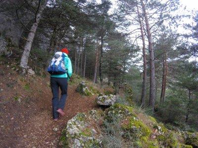 Hiking tour in Málaga + shuttle