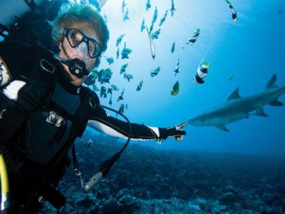 Dive Scuba SSI & Padi Courses