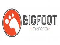 Bigfoot Summer Flyboard