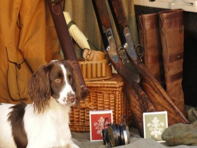 Melbourne House Country Pursuits Hunting