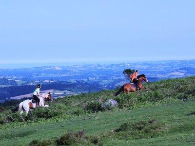 Destination Cumbria Horse Riding