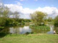 The Bottom Pond