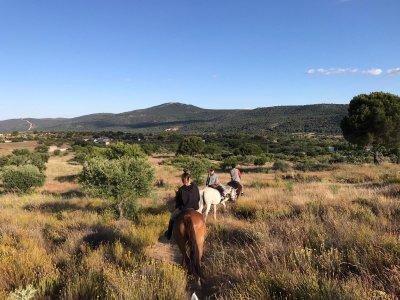 Multiadventure activities package Sierra de Madrid