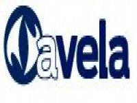AVelaMar Vela