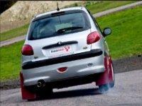 Peugeot 206 Rally Car