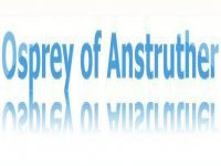 Osprey of Anstruther