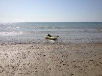 Sole kayak
