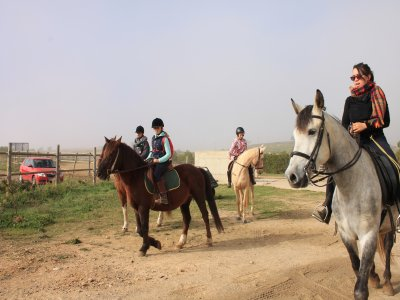 1-hour horse riding lesson in Zaragoza