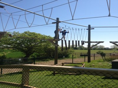 Wired High Ropes Challenge