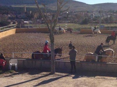 Summer horse-riding course mornings, 4d
