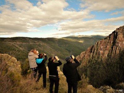 Birdwatching and pasturing goats 6h Sierra Gata