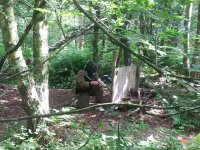 Our woodland site