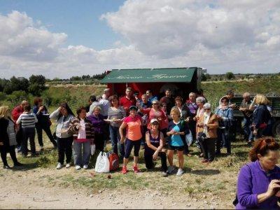 Ecoturism: vineyard+lunch Colmenar de la Oreja