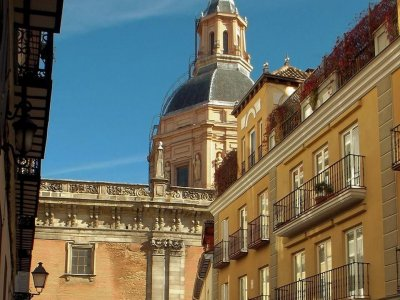 Guided route around Madrid for schools