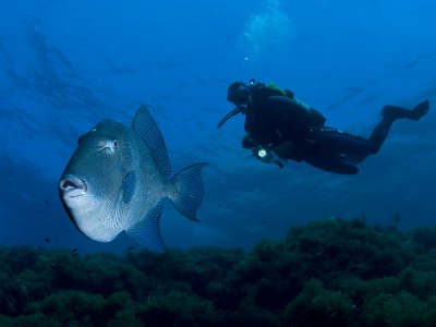 PADI Discover Scuba Diving Course Clitheroe