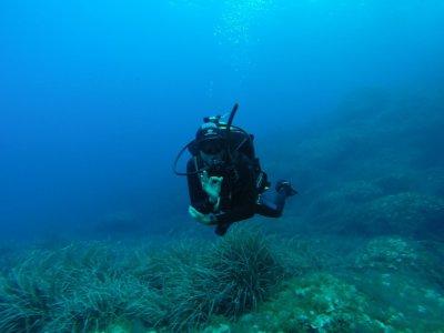 First diving experience Bahía de Palma 3 or 4 h