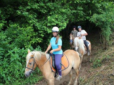 2h Horseback Route Vall de Bas + Class & Snacks
