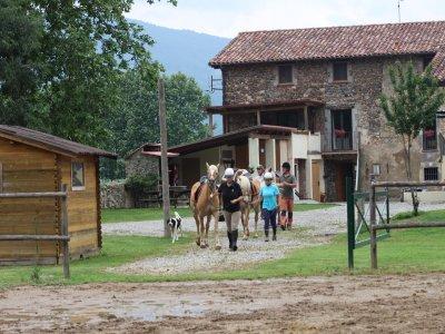 Ride a Horse in La Garrocha + 3h Class & Snack