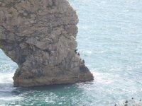 Fantastic coasteering terrain