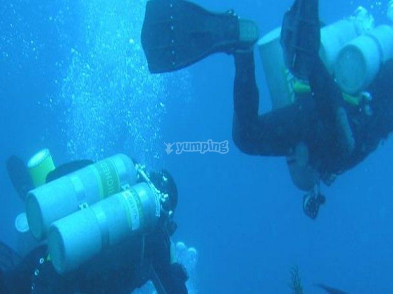 Diving pair