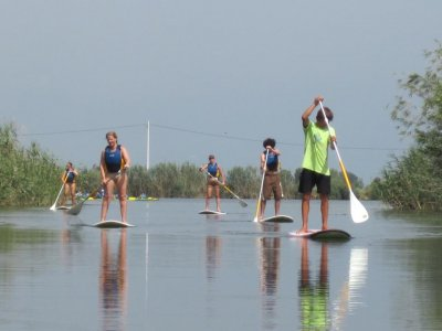 Paddle surf material renting Delta del Ebro 1h