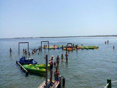 Kayak renting Delta de Ebro 3h