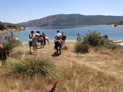 Horse ridng route in Madrid's Sierra Norte & Meal