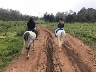 Horseback riding route beginners in La Esperanza