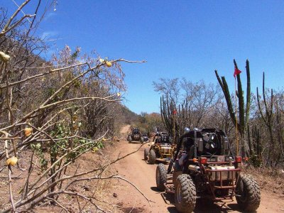 Buggy Route + Paintball and Meal in Leon