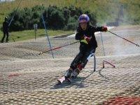 Rapid skier