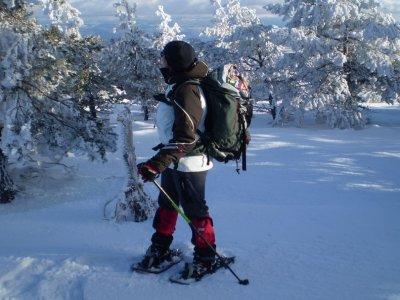 Snowshoes tour Vall de Bohí 1,5h