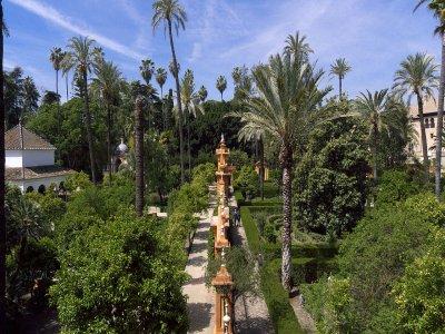 Guided tour Islamic Sevilla + Alcazar Children