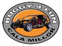 Buggy 4 Fun Buggies