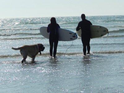 3Elements Surfing