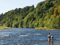Learn how to go fly fishing.