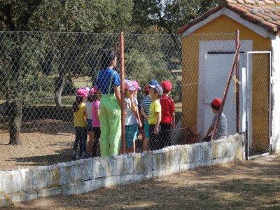 Farm school for families + accomodation + workshop