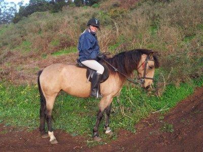GEMNE Granja Escuela Manejo Natural Equino Rutas a Caballo