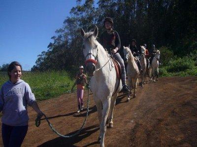 GEMNE Granja Escuela Manejo Natural Equino Campamentos Hípicos