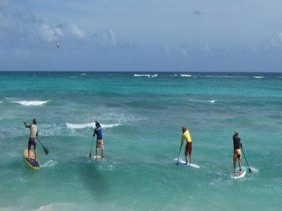 Cutre Paddle Surf
