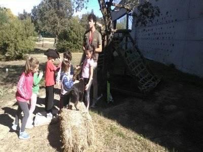 Nature workshop for kids at Aznalcázar