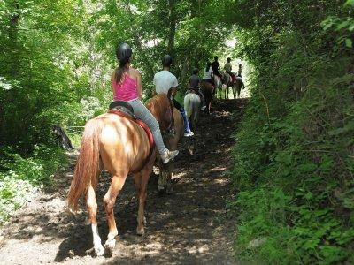 1-Hour Horse Riding Tour Llavorsí mountains