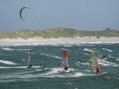 Wild Diamond Windsurfing