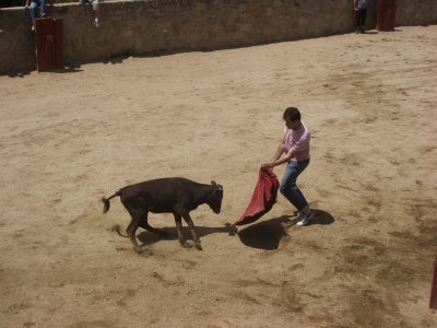 Escuela de Equitación Xanadú Capeas