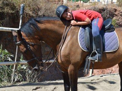 4 horse-riding classes at Marbella