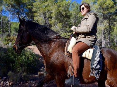 Full Moon Horse Ride Villamarxant & Rural House